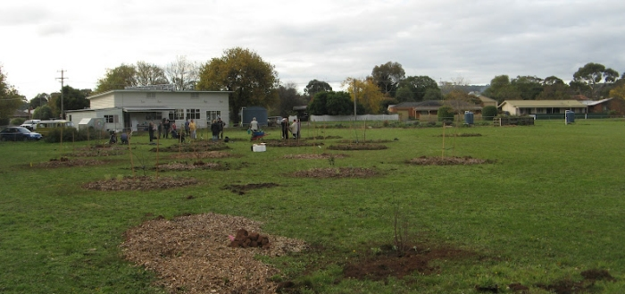 2012-05-06-planting-the-apple-trees